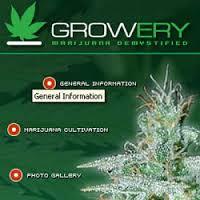 growery