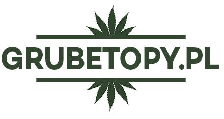 grubetopy