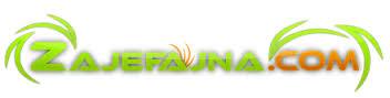 zajefajna.com